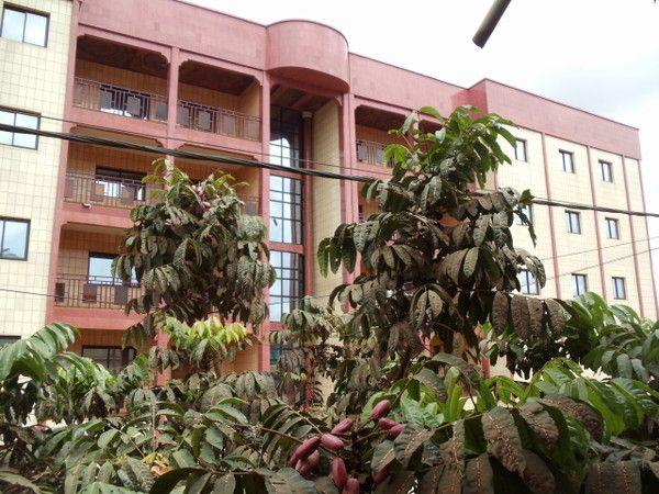 Appartement a louer a bafoussam page 2 for Chambre de commerce cameroun
